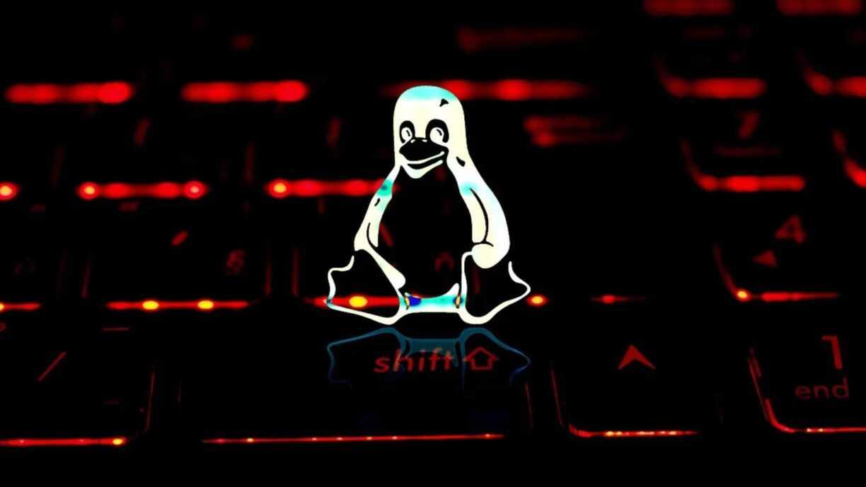 Alerta: Falha com 7 anos no Linux permite invasores fazer tudo