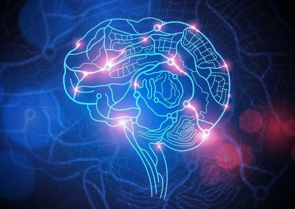 Un partenariat entre Google et Harvard cartographie un millimètre cube du cerveau humain