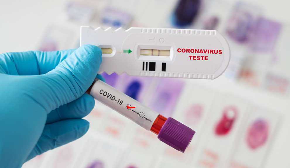 COVID-19 : les personnes infectées peuvent créer des anticorps à vie