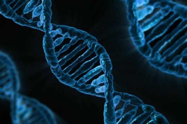 Génome humain complet séquencé pour la première fois