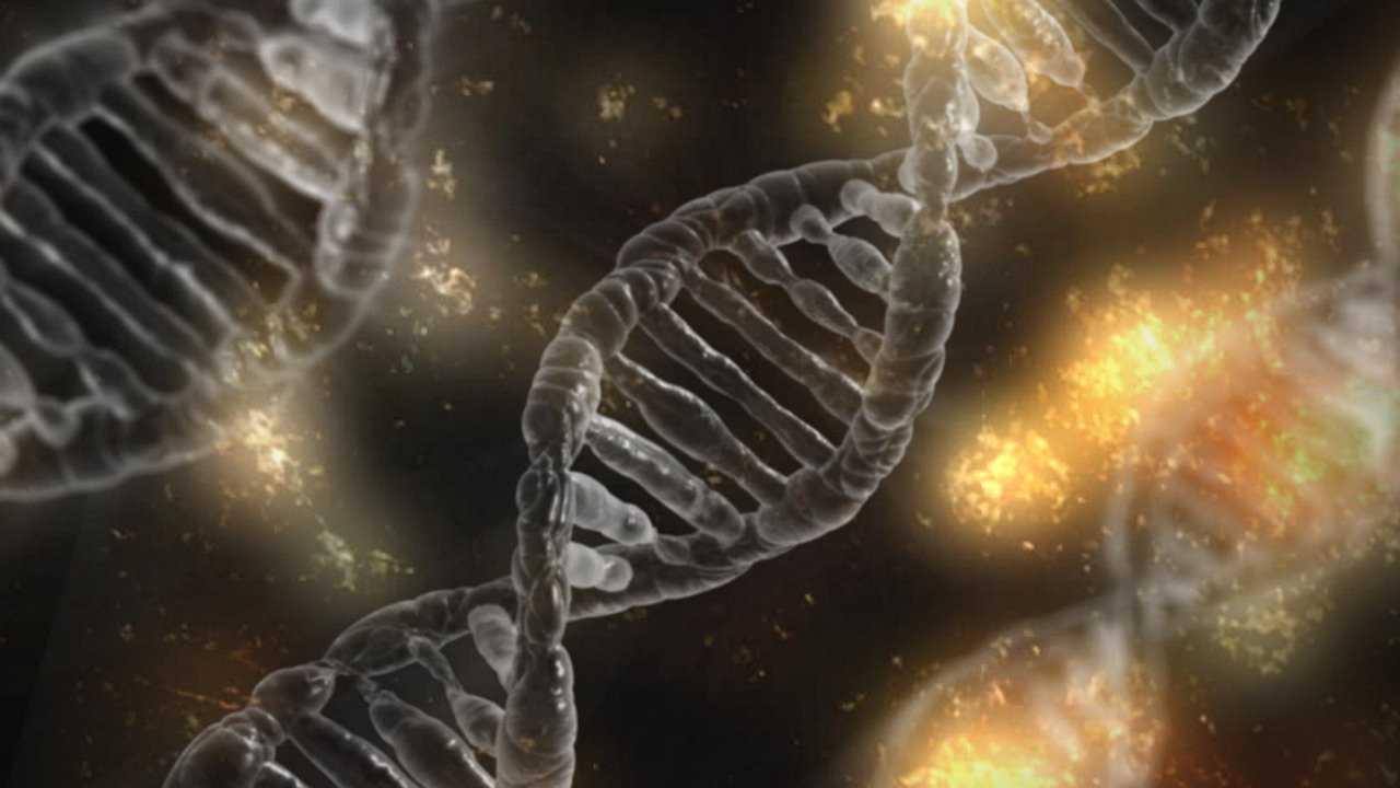 Des scientifiques font ressembler l'ADN humain à l'ADN de moustique