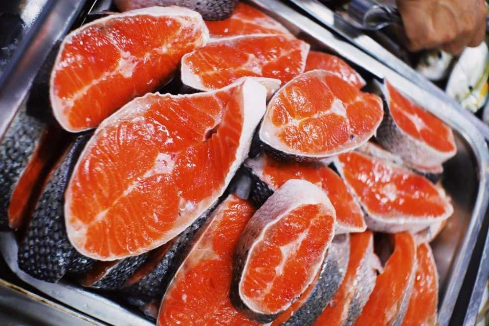 Les Américains mangeront du saumon génétiquement modifié