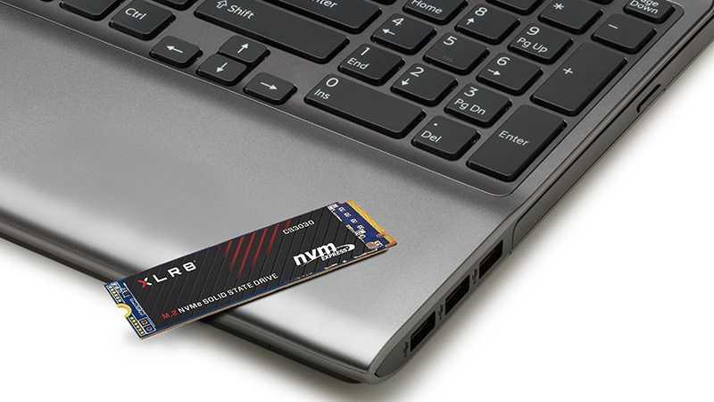 PNY réduit la garantie de ses SSD en raison du minage de la crypto-monnaie Chia