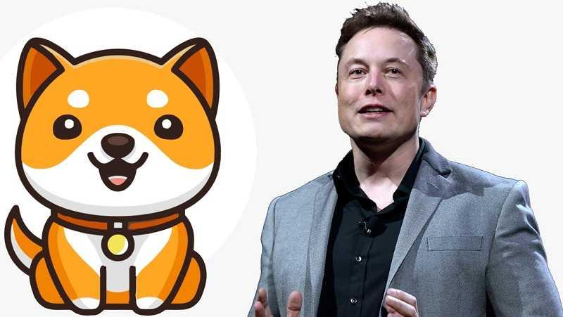BabyDoge, la crypto-monnaie dérivée du Dogecoin, a augmenté de 100% après le tweet de Musk