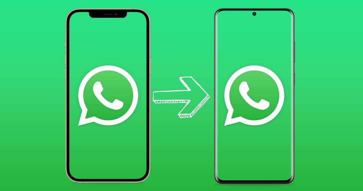 WhatsApp : vous n'aurez plus besoin d'outils ou de programmes externes pour déplacer les chats de l'iPhone vers Android